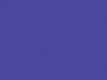 38.Wild Violet