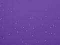 67.Purple Rainbow Sparkle