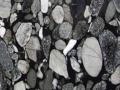 Black Mosaic